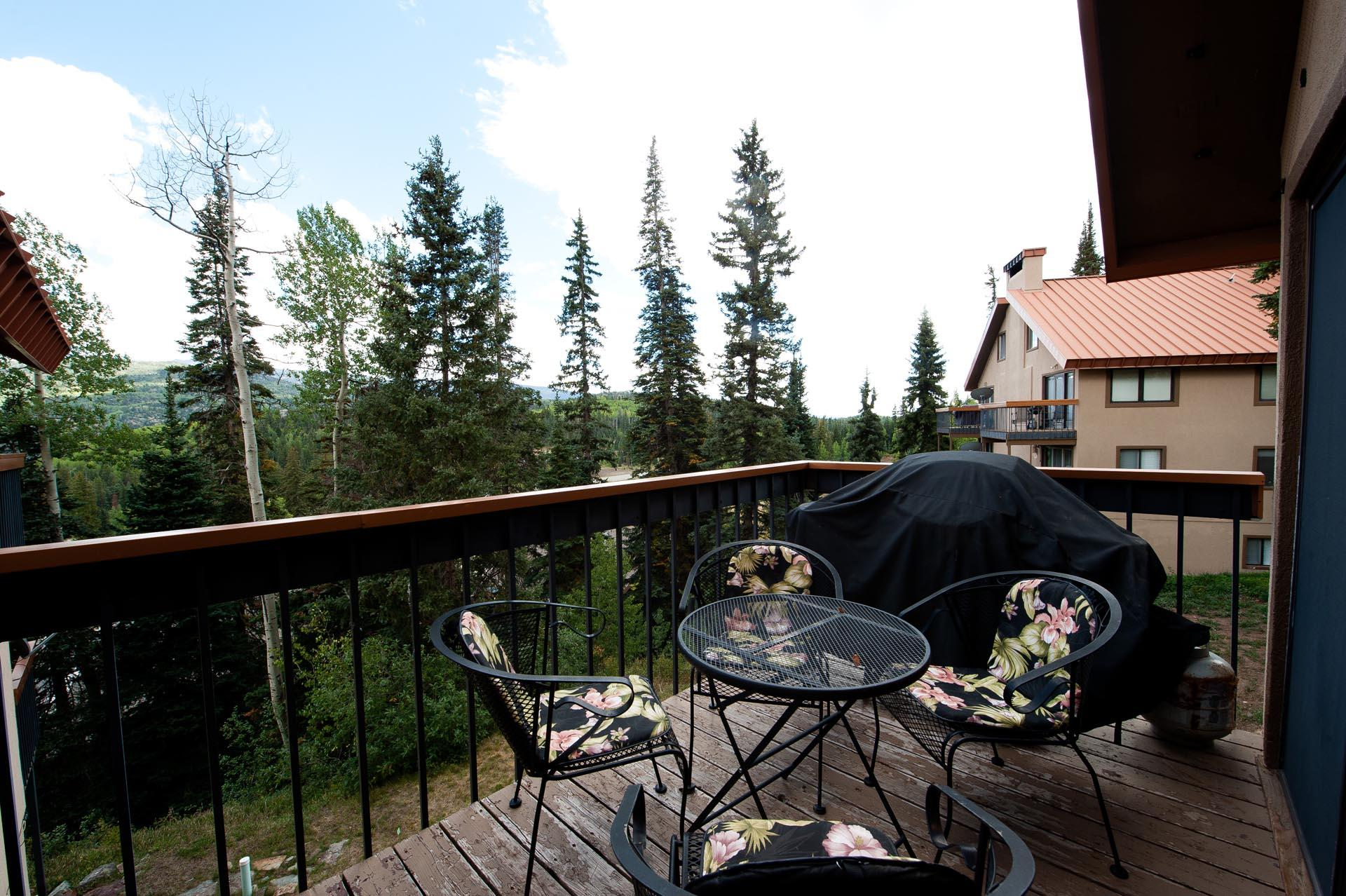 Affordable Ski in/Ski Out Condo - Newly Furnished - Mountain Views & Deck