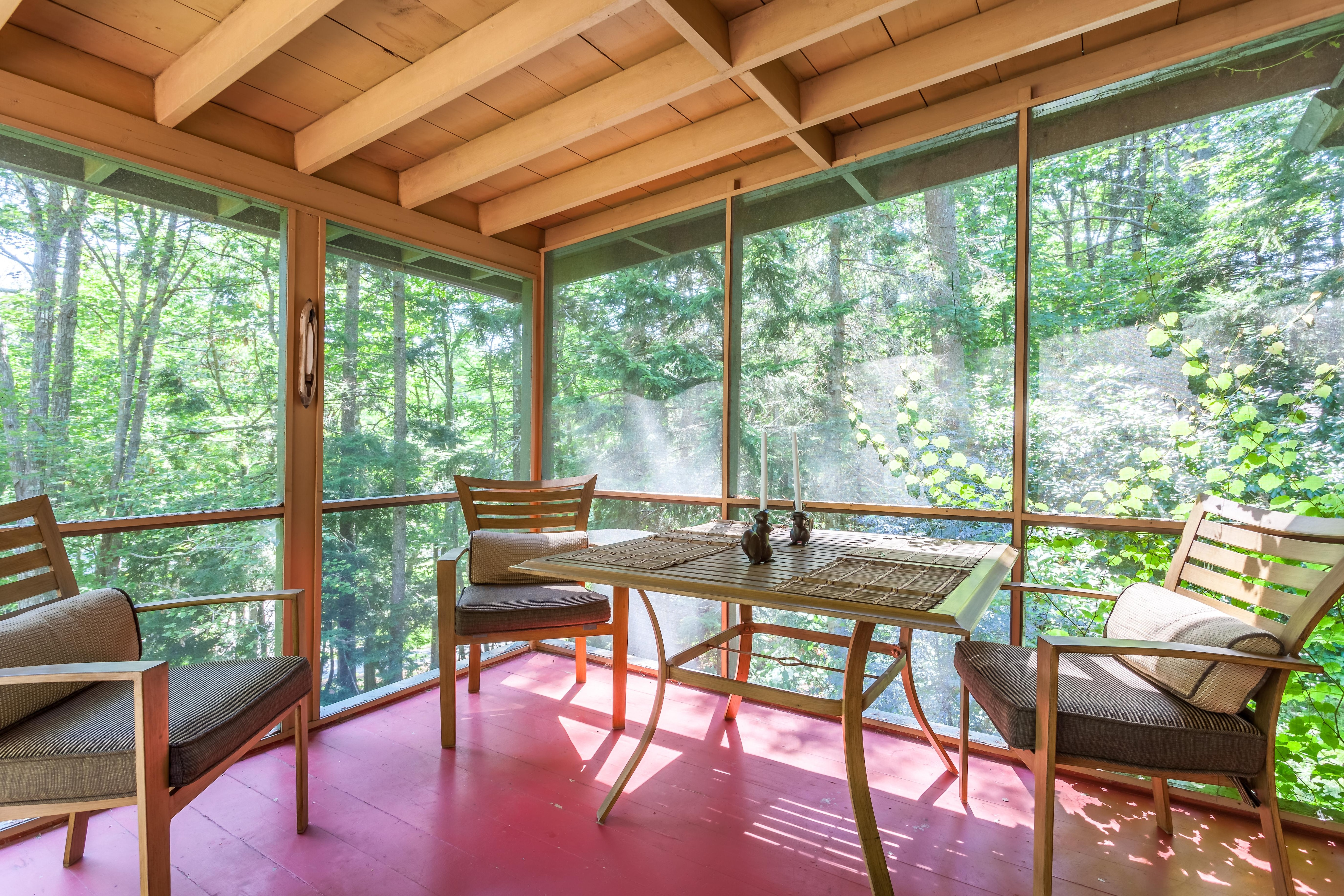 Panoramic forest views from the screened in porch