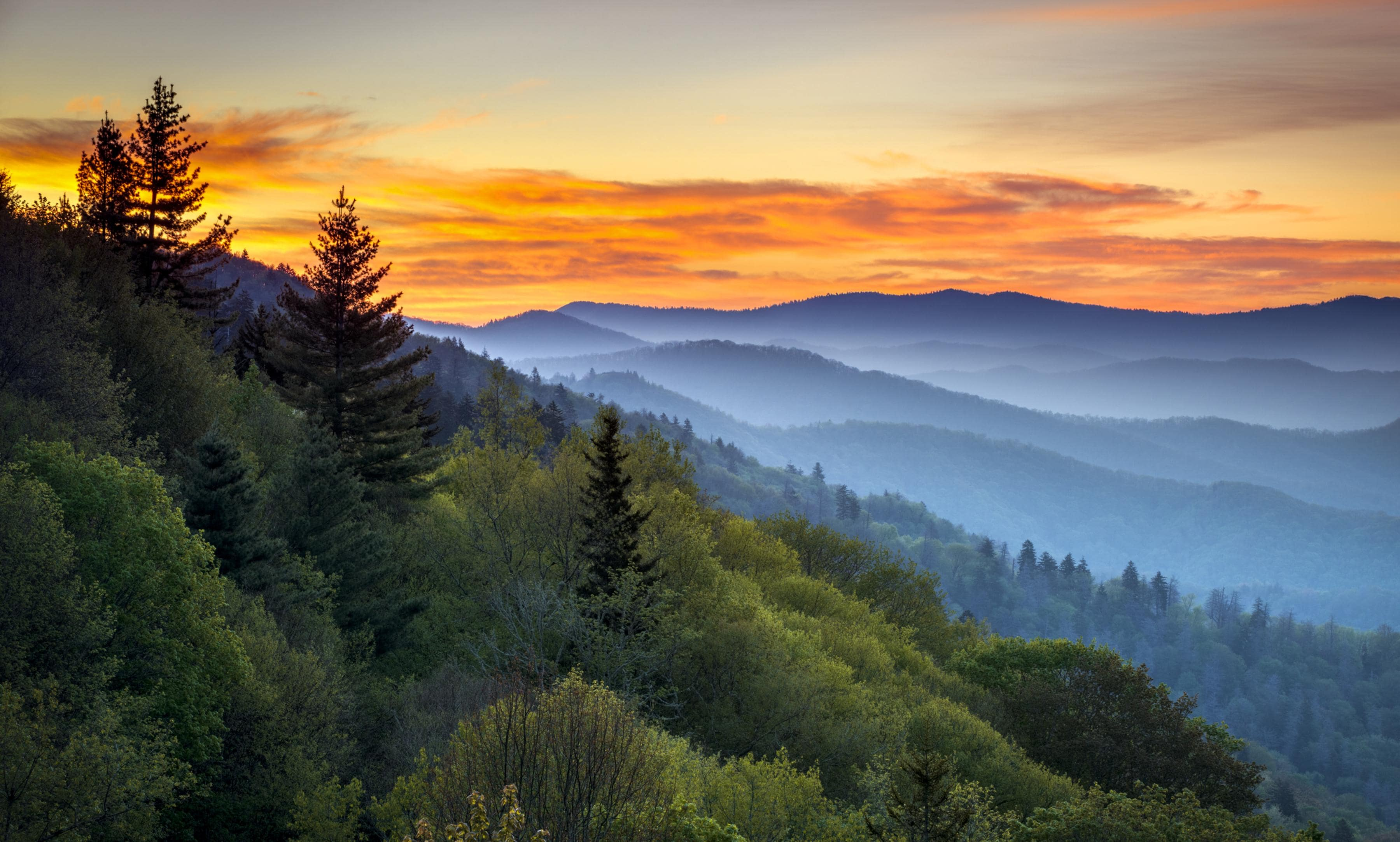 Ski at Oder or hike the Great Smoky Mountains -- the outdoors are right at your fingertips!