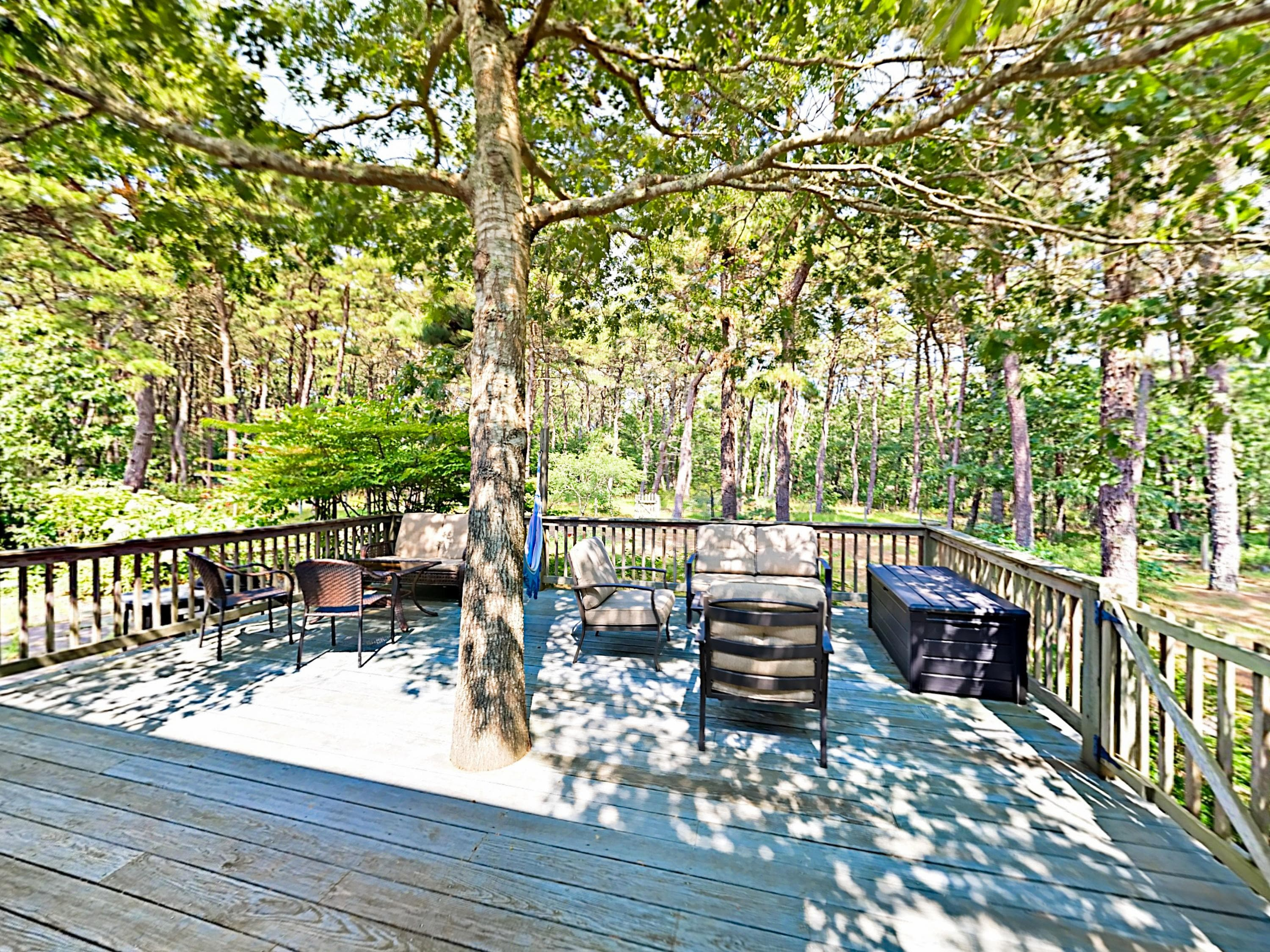 Sprawling deck surrounded by woodland.
