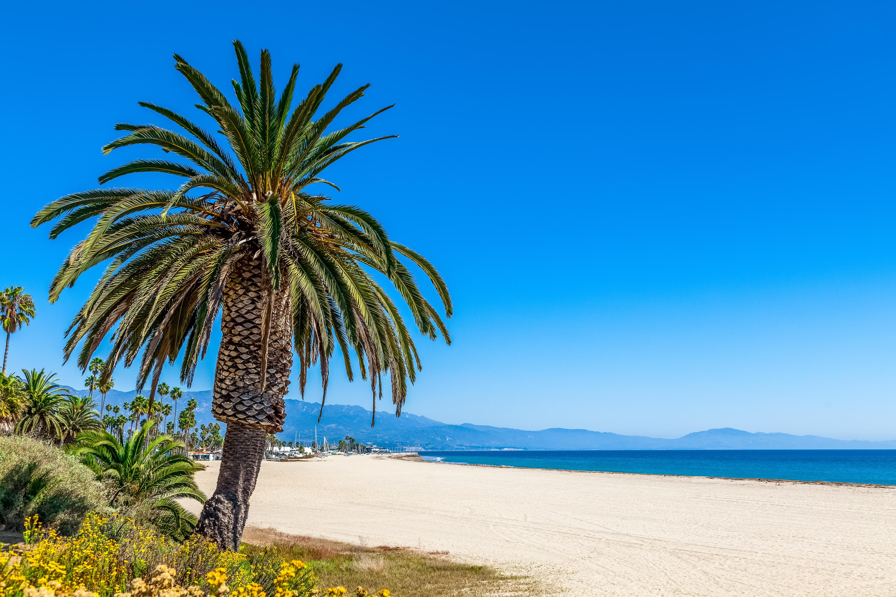 Soak up the sunshine on the pristine beaches of Santa Barbara.