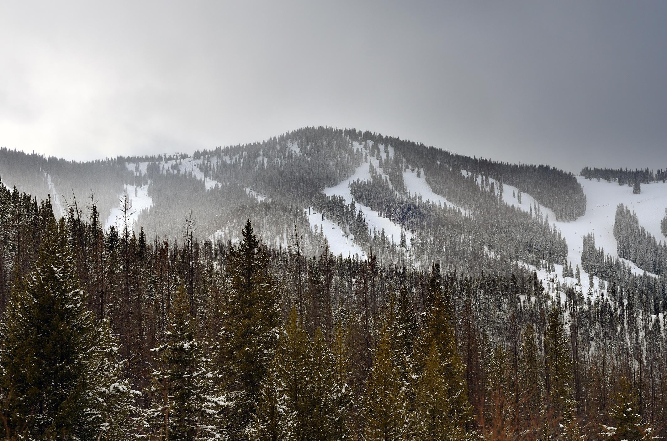 Discover some of the country's best skiing at Winter Park Resort within a 15-minute drive.