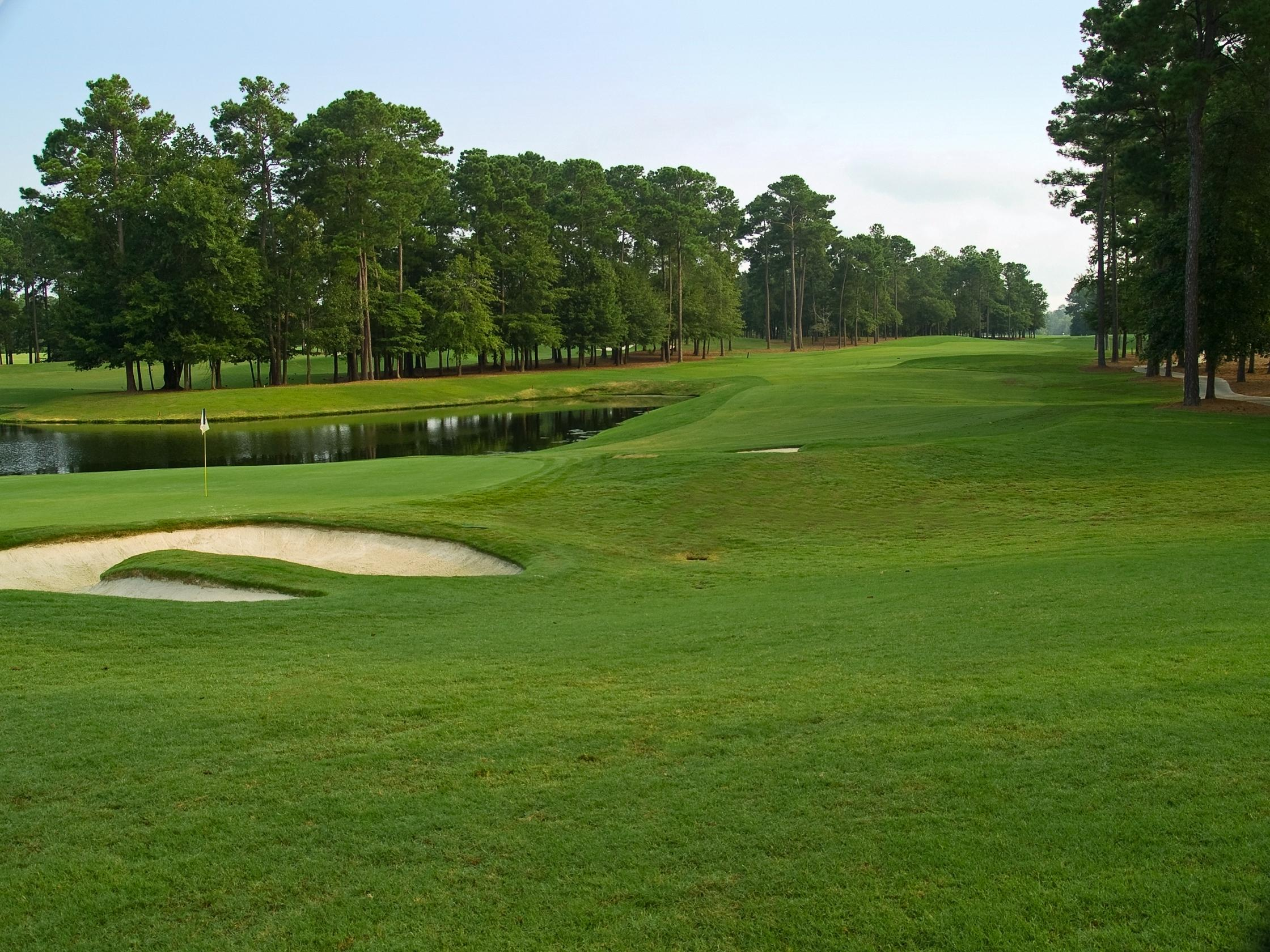 Golf enthusiasts can perfect their swing at several nearby courses.