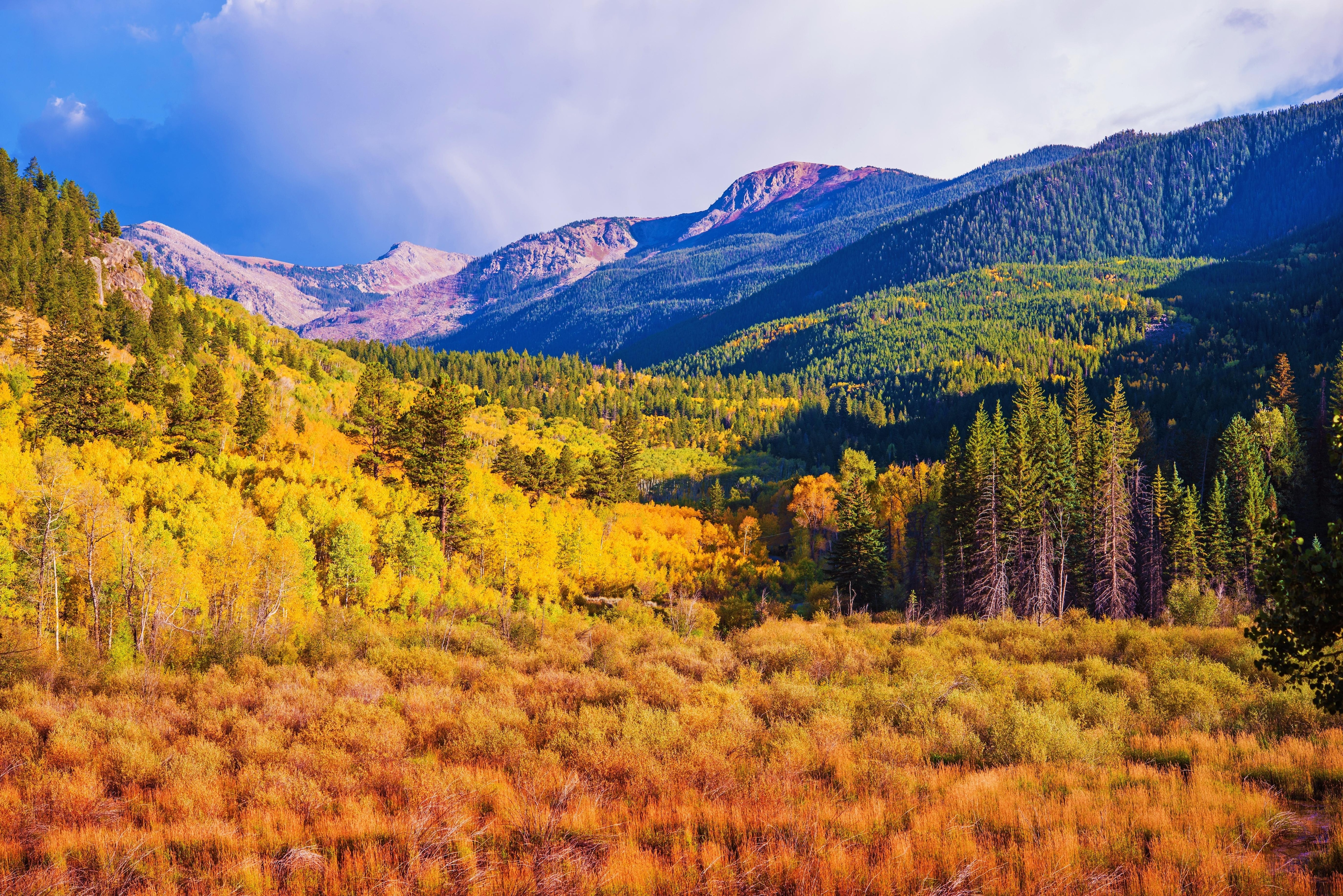 Visit Vail during the fall and encounter a riot of color.