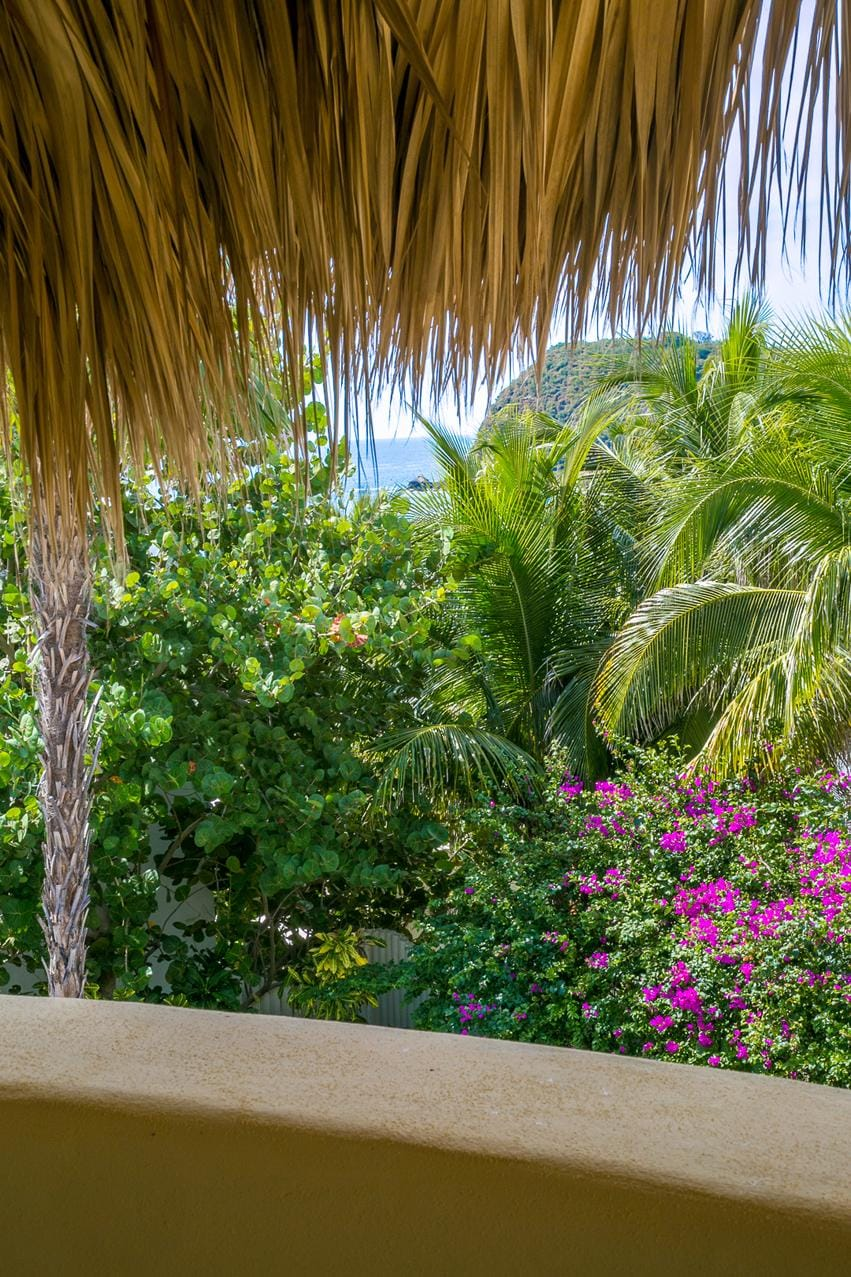 Lush Tropical Oasis with Ample Privacy
