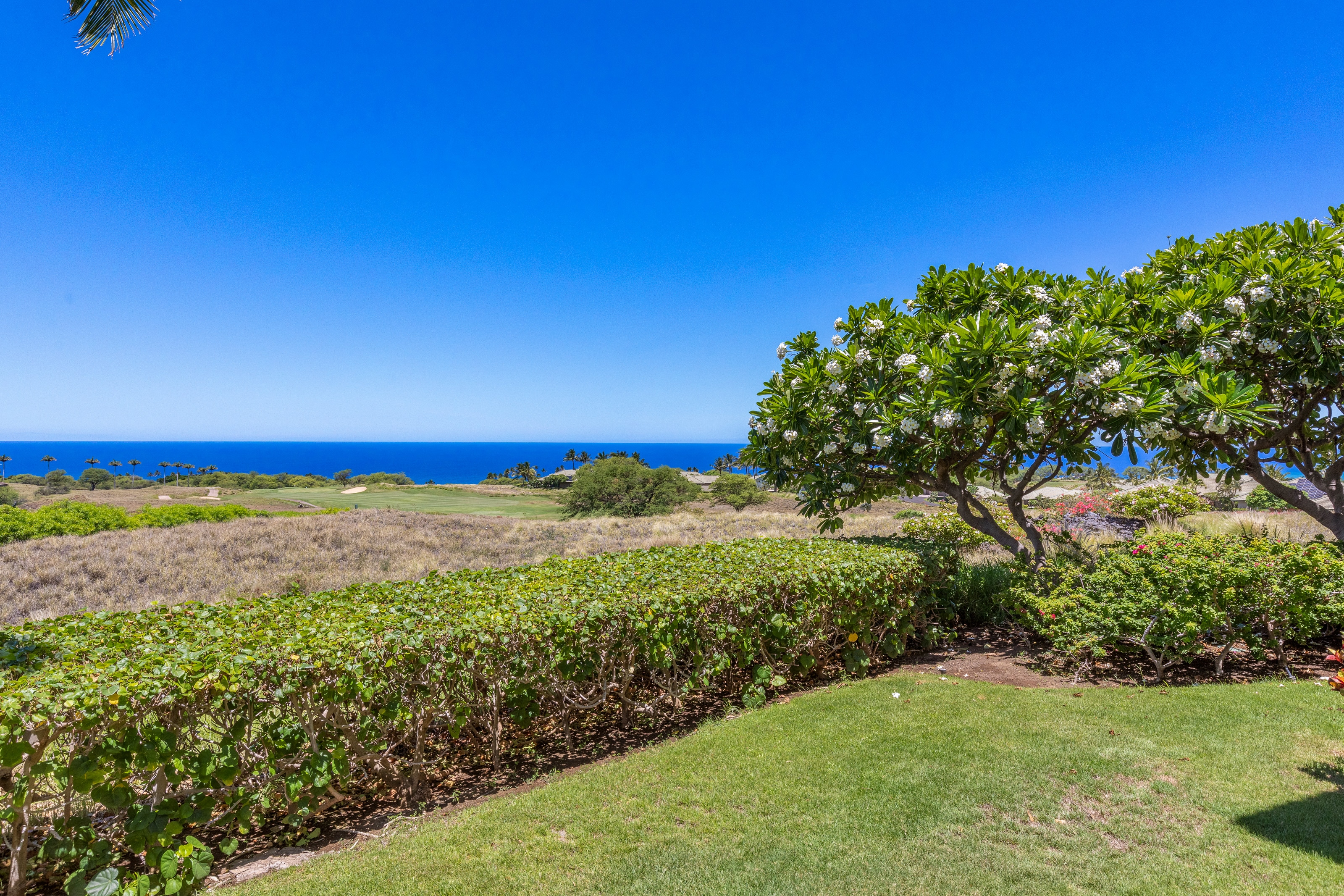Luxury Condo with Ocean & Golf Views, approx. 1 Mile to Beach