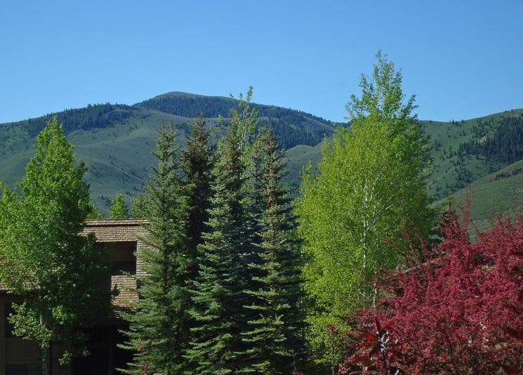 Cozy, Wood Trimmed Condo with Golf View & Deck; Near Slopes