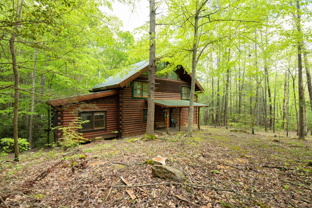 Property Image 1 - Tranquil Cabin Tucked Away in Pine Forest