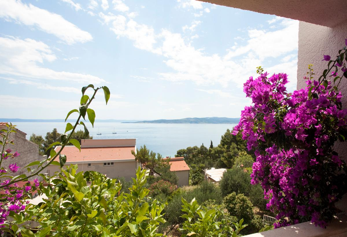 Property Image 2 - Amazing Villa with Hidden Passage to the Beach