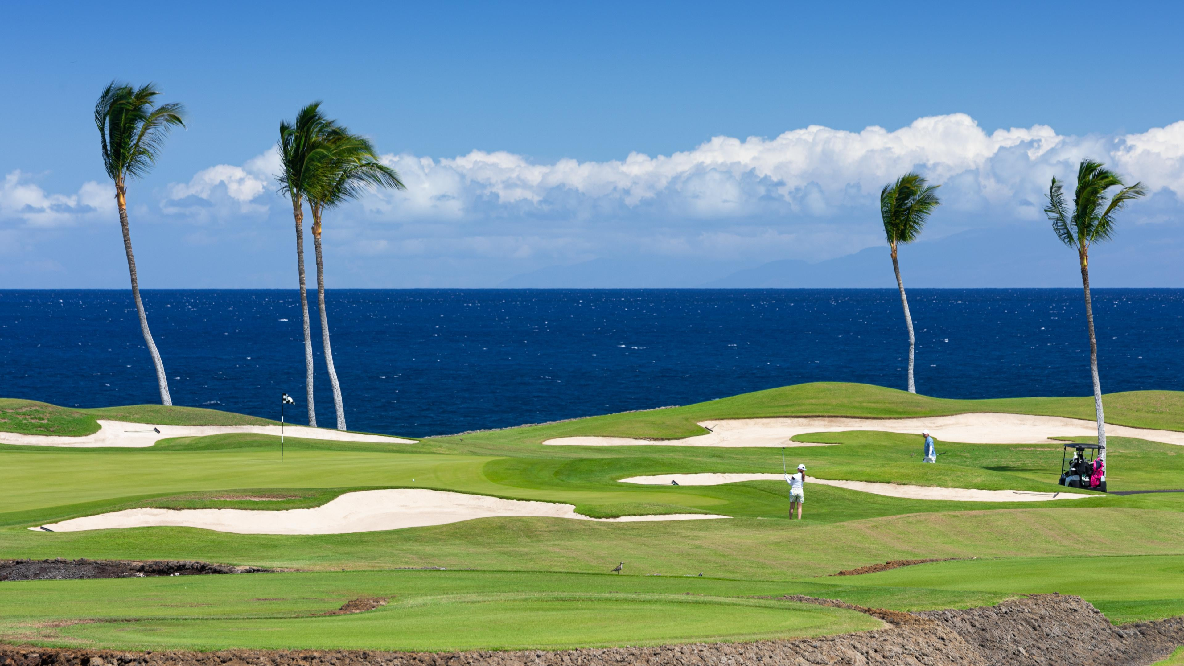 Amazing Ocean Front Luxury - Signature Golf Hole, Whale watching