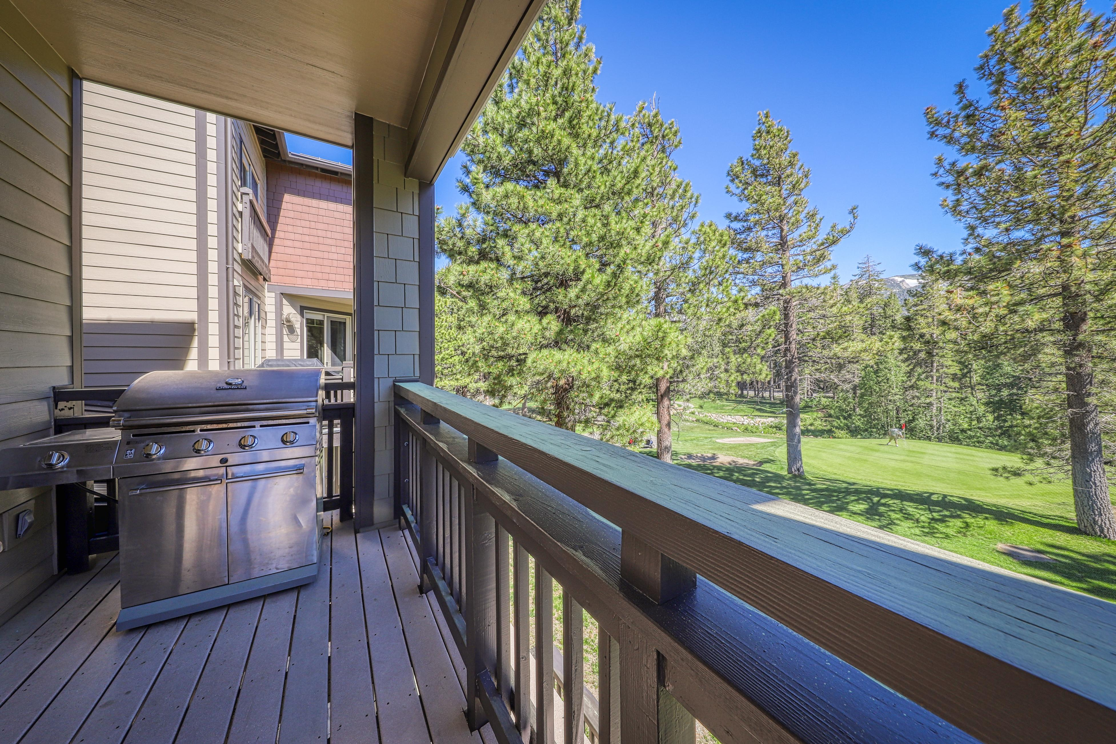 Property Image 1 - Mammoth Green 207